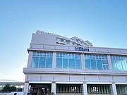 靠着<em>东京湾</em>看天际线—东京台场希尔顿 10天深度体验+游玩攻略