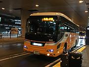 <em>东京湾</em>的夜——东京台场希尔顿体验报告