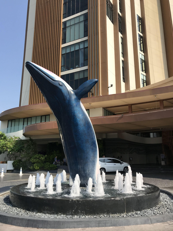 年少生鱼心,见水亦忘魂 - 沉浸在水世界的华欣VANA NAVA假日酒店