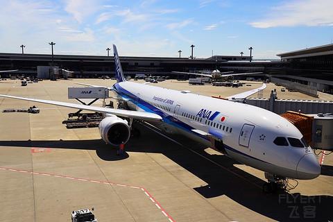 记全日空787-10搭乘SIN- NRT