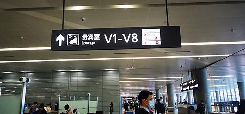京沪线  中国东方航空SHA~PEK                             MU5115进博号飞行体验报告