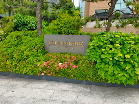 流连半岛-东京半岛酒店