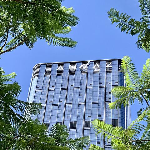 #丸子君深圳商务行# Day2/3季裕棠在深圳湾设计的豪宅等你来做客 探访深圳湾安达仕酒店