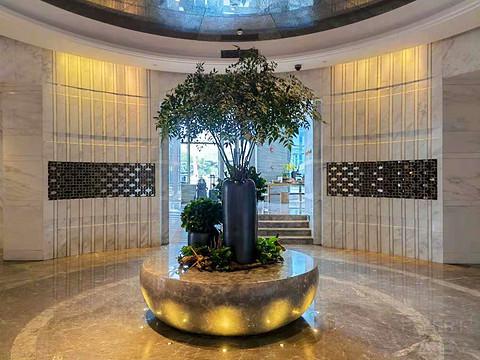 颇有亮点的养生酒店---上海阿纳迪