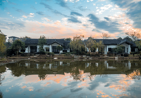 江浙沪地区的亲子遛狗优选之杭州天域观堂