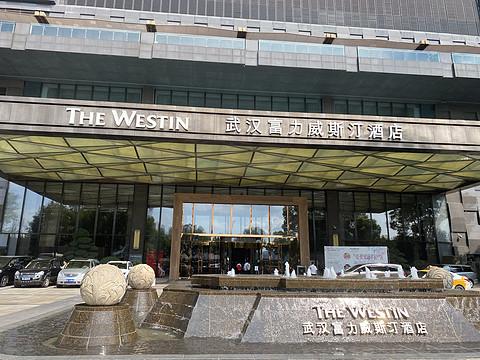 武汉富力威斯汀酒店行政侧江景双床房:白挑第五站