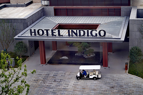 南京园博园英迪格酒店单卧花园景观套房