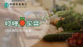 [已过期] 农业银行2月春节半价活动:25元购50元,50元购100元
