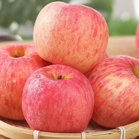冰糖心  红富士苹果   5斤75mm果装