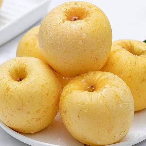 【淳化馆】集邻品鲜 奶油富士苹果 5斤装
