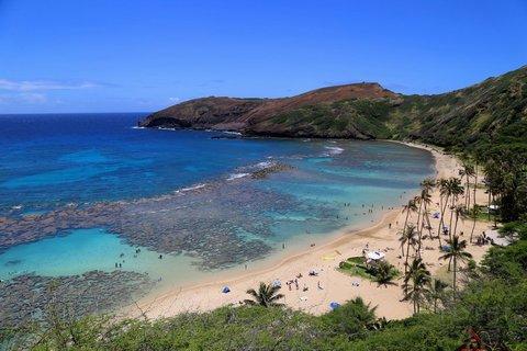 美国:夏威夷:瓦胡岛:威基基海滩凯拉兰尼公主喜来登,穷人首选 + 瓦胡岛揽胜