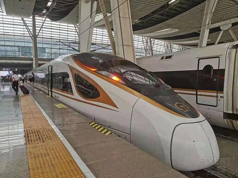 【老复兴号体验】G195 北京南-杭州东商务座体验+候车室轻测评