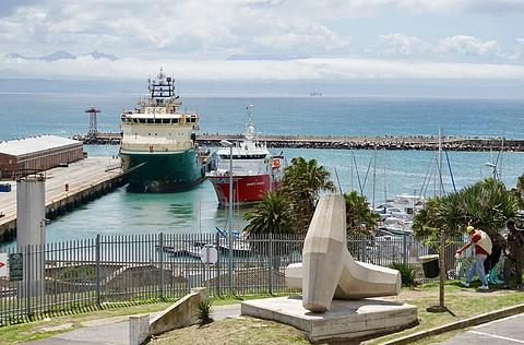 欠下的Report第六篇:海神花开 用Protea串起南非洲之旅 ⎜ 纳米比亚与南非的Prot ...